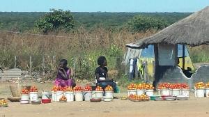 Zambia road side